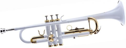 Hawk WD-T314-WH Bb Trumpet with Case and Mouthpiece, White